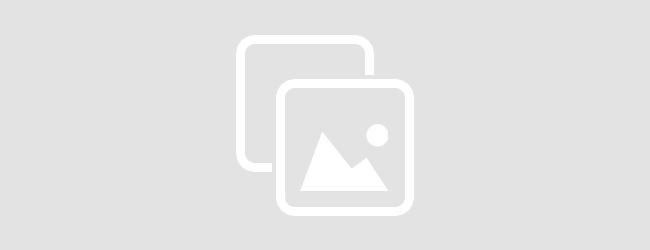Рецепты «детенизации» земельных правоотношений от Максима Степанова, или не до жиру быть бы живу – БУДЖАК info